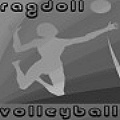 Ragdoll Volleyball - Play volleyball with a ragdoll ... what is next?